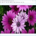 http://www.esistor.com/uyeler/resim/kucuk/CPix__image_viewer.jpg